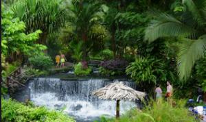 天然温泉のオアシス