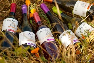 ヴィーニャ・コノスルのワイン