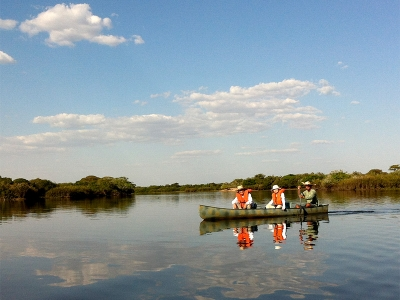 カヌーに乗って野生動物を観察します