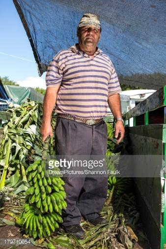 コスタリカの平均的なバナナを持つ人の服装
