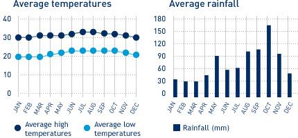 年間の平均気温と降水量