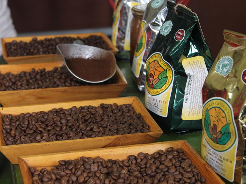 ドカ・コーヒー農園